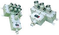 BAX 51系列防爆检修电源插座箱